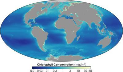 20071020143300-chlorophyll-sea-97-07.jpg