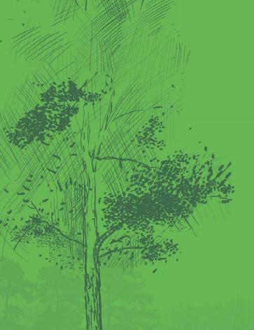 20111211191539-dibujo.jpg